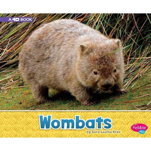 Wombats - (Australian Animals) by  Sara Louise Kras (Paperback) - image 1 of 1