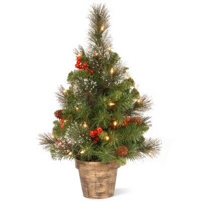 2ft pre lit artificial christmas tree crestwood spruce with clear lights national tree company target - Target Small Christmas Tree