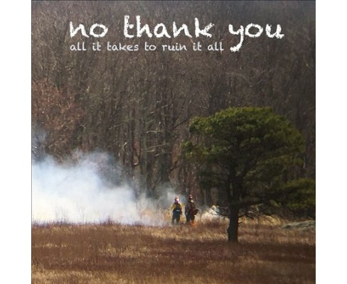 No Thank You - All It Takes To Ruin It All (CD) - image 1 of 1
