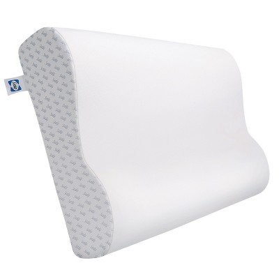 Sealy Memory Foam Contour Bed Pillow (Standard)