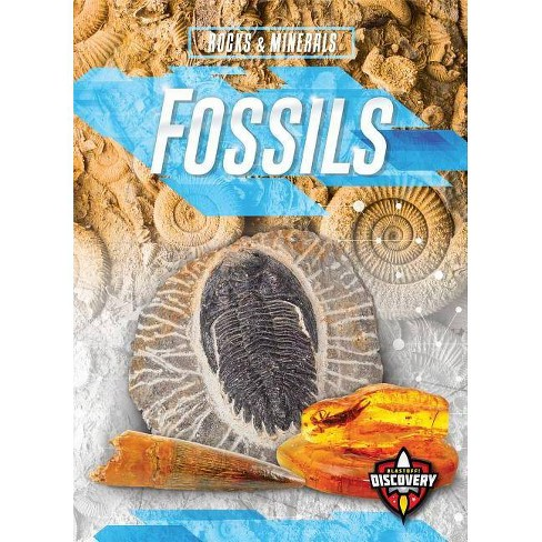 Fossils - (Rocks & Minerals) by  Patrick Perish (Paperback) - image 1 of 1
