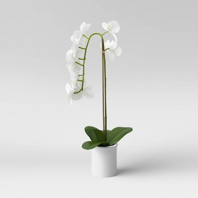 "21"" x 9"" Artificial Orchid Arrangement in Pot White - Threshold™"