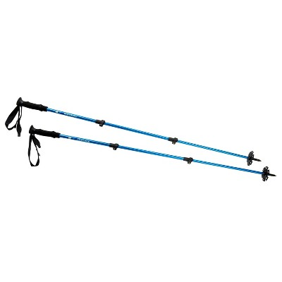 Sierra Designs Adjustable Trekking Pole