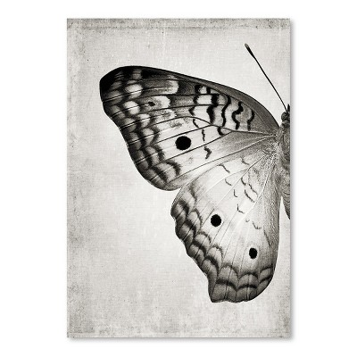 Americanflat Gray Butterfly I by Chaos & Wonder Design Poster