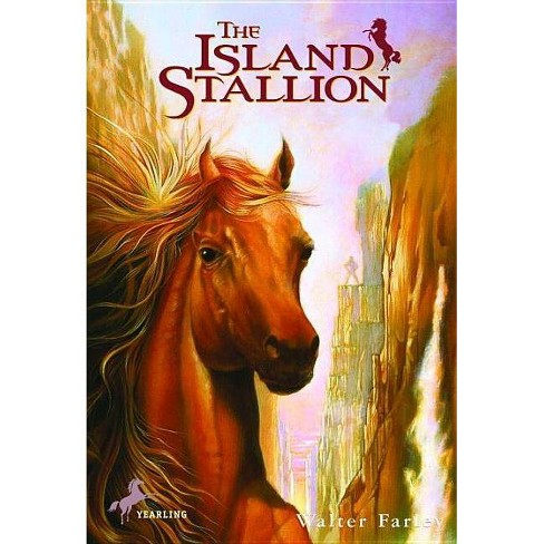 The Island Stallion - (Black Stallion (Paperback)) by  Walter Farley (Hardcover) - image 1 of 1