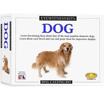Dog Craft Kit - Eyewitness Kits