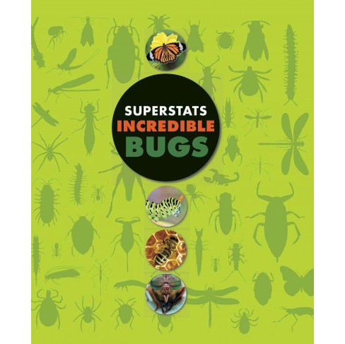 Incredible Bugs (Hardcover) (Moira Butterfield) - image 1 of 1