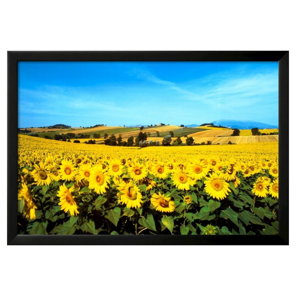 Art.com Sunflowers Field, Umbria by Philip Enticknap - Framed Art Print, Black