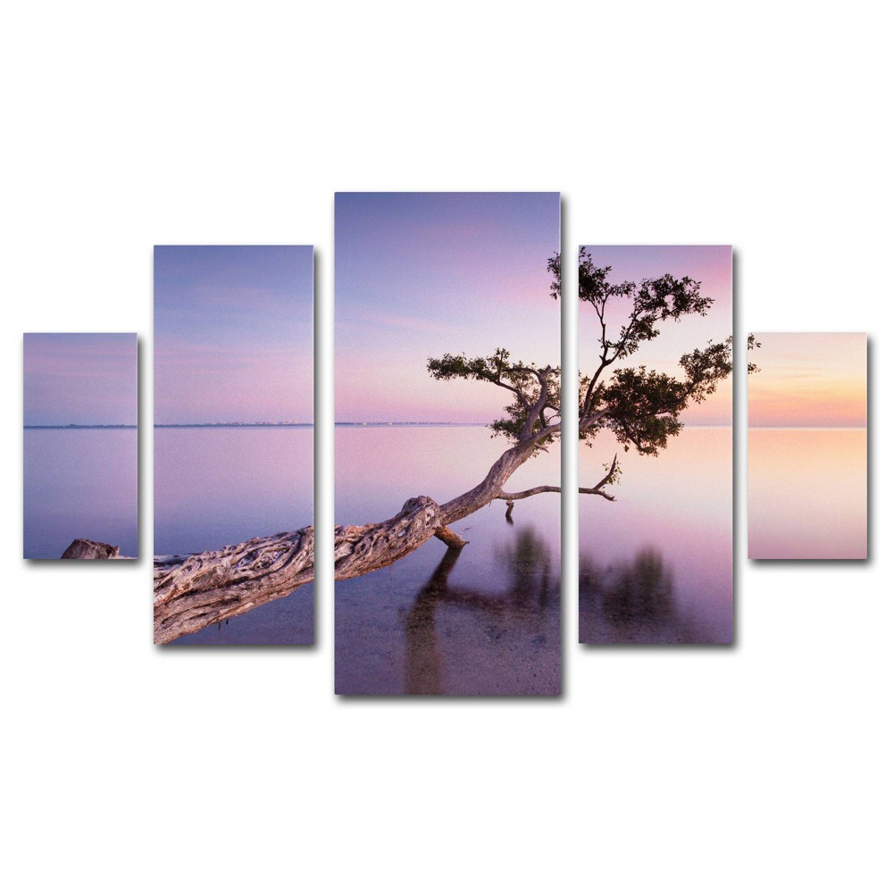 'Water Tree Xv' by Moises Levy Ready to Hang Multi Panel Art Set, Multi-Colored