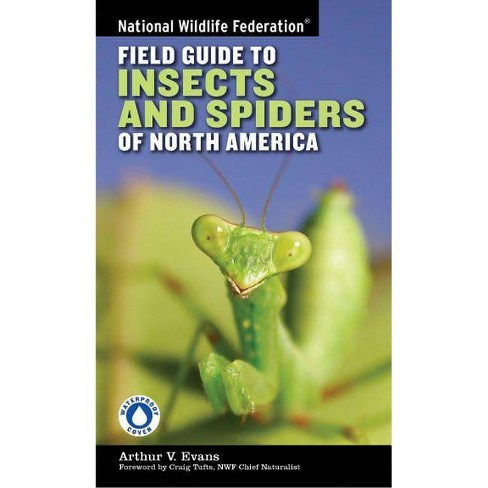 National Wildlife Federation Field Guide to Insects and Spiders & Related Species of North America - by  Arthur V Evans (Paperback) - image 1 of 1