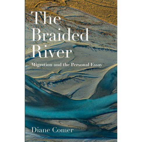The Braided River - by  Diane Comer (Paperback) - image 1 of 1