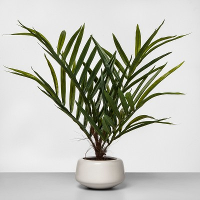 27  x 16  Artificial Potted Palm Green/White - Project 62™