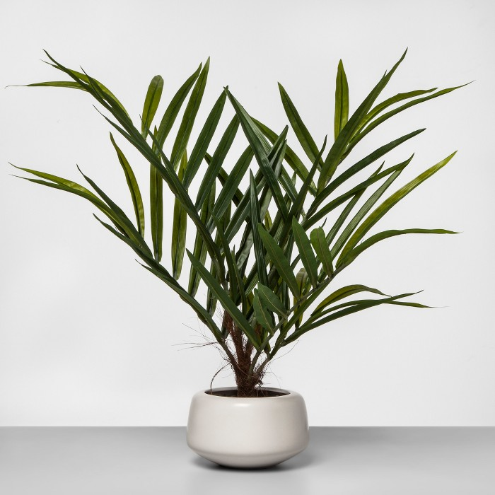 "27"" x 16"" Artificial Potted Palm Green/White - Project 62™ - image 1 of 3"