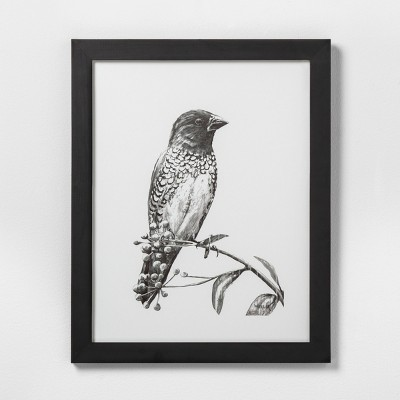 16  X 20  Sketched Bird on Branch Wall Art with Black Wood Frame - Hearth & Hand™ with Magnolia