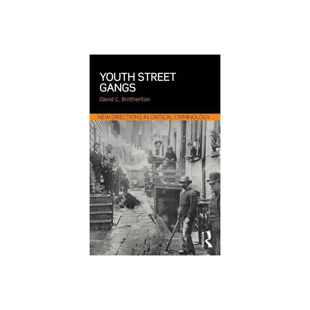 Youth Street Gangs New Directions In Critical Criminology By David C Brotherton Paperback
