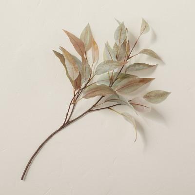 "22"" Faux Rusted Eucalyptus Leaf Plant Stem - Hearth & Hand™ with Magnolia"