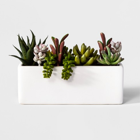 3 5 X 3 5 Artificial Succulents In Pot Green White Project 62