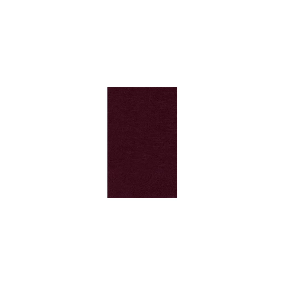 Holy Bible : Nrsv, Thinline Bible, Bonded Leather, Burgundy - by Zondervan Publishing House (Hardcover)