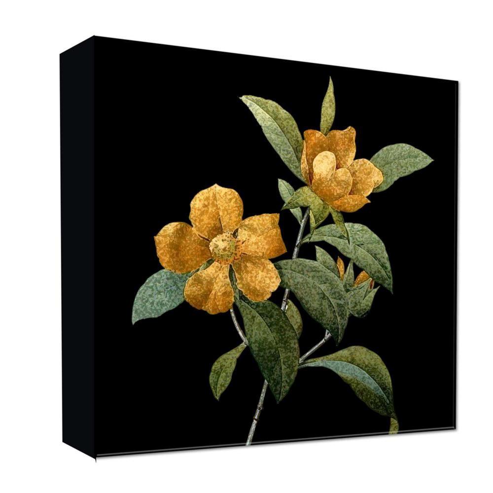 16 34 X 16 34 Flower Beauty Decorative Wall Art Ptm Images