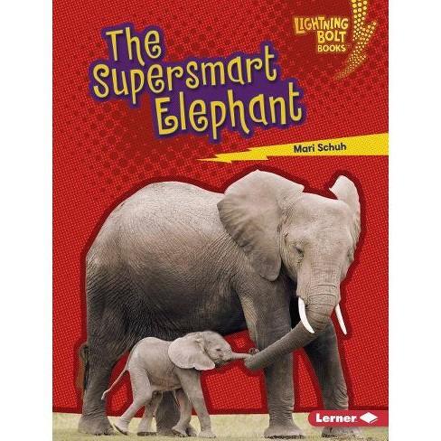 The Supersmart Elephant - (Lightning Bolt Books (R) -- Supersmart Animals) by  Mari C Schuh (Hardcover) - image 1 of 1