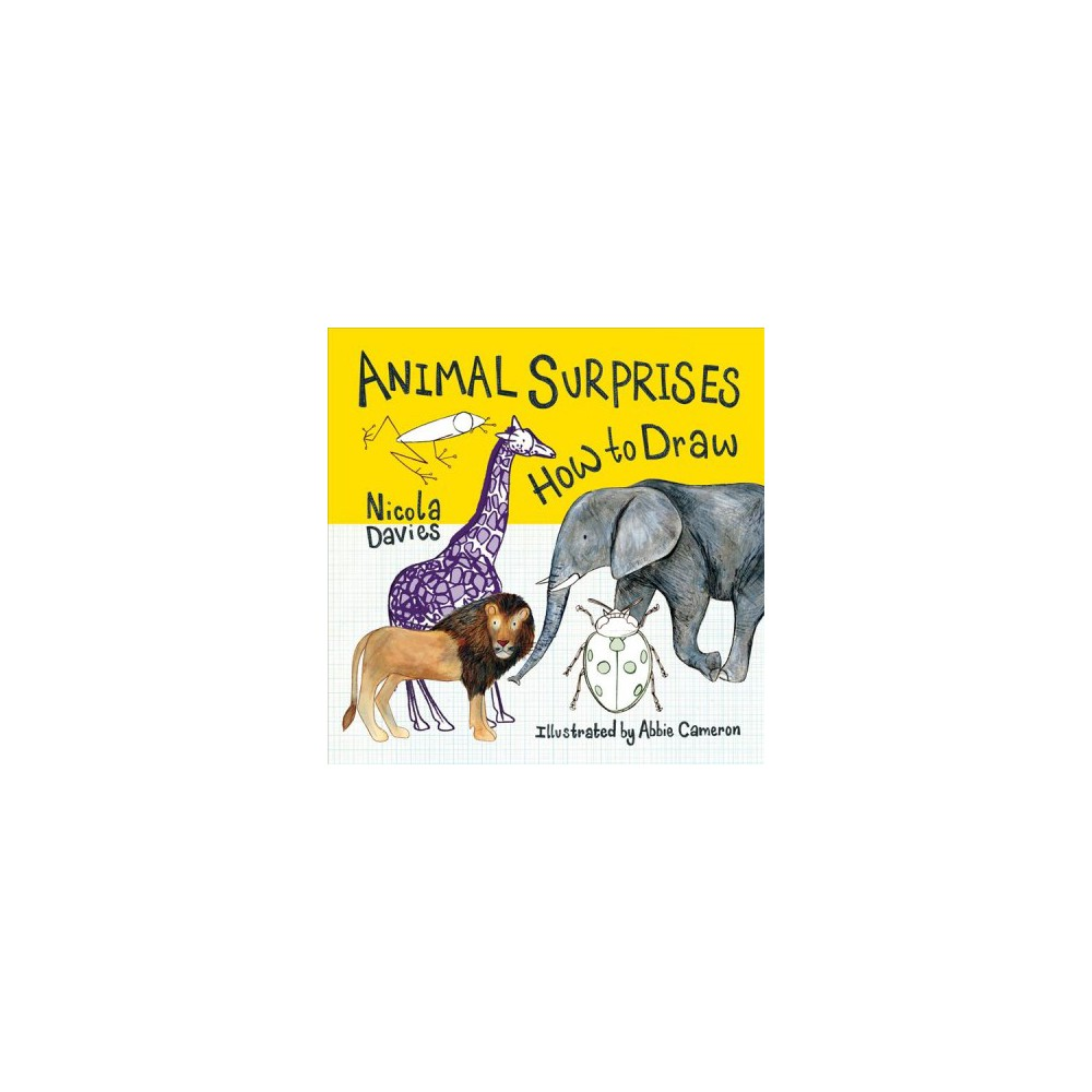 Animal Surprises : How to Draw - (How to Draw) by Nicola Davies (Paperback)