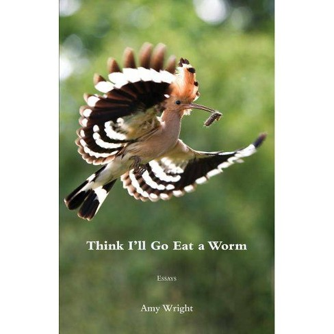 Think I'll Go Eat a Worm - by  Amy Wright (Paperback) - image 1 of 1