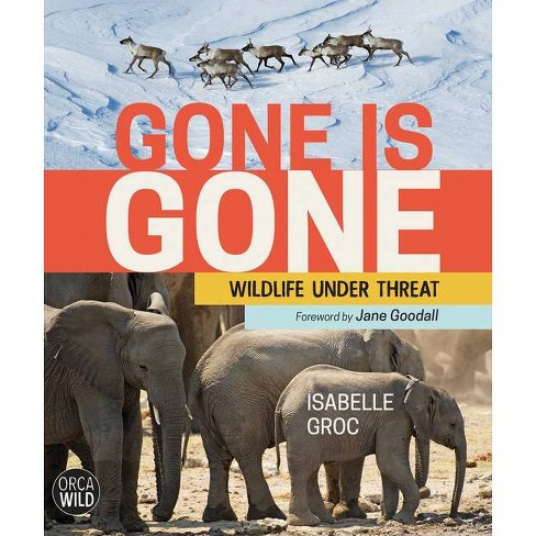Gone Is Gone - (Orca Wild) by  Isabelle Groc (Hardcover) - image 1 of 1