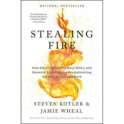 Stealing Fire - by  Steven Kotler & Jamie Wheal (Hardcover) - image 1 of 1