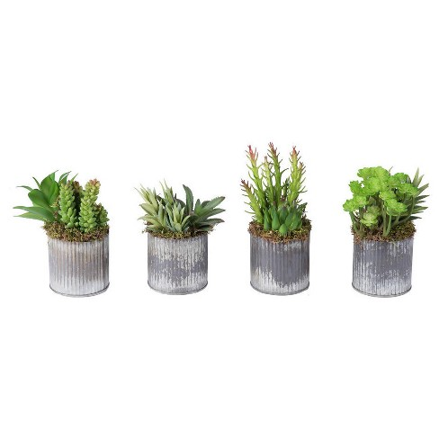 Artificial Succulent Set in Tin Vase Green - Vickerman - image 1 of 2