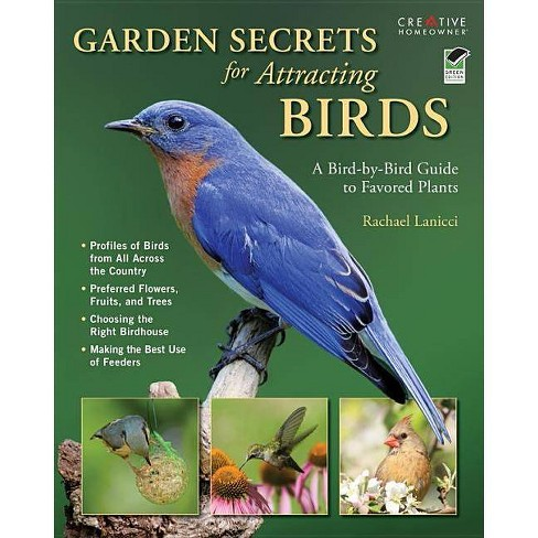 Garden Secrets for Attracting Birds - by  Rachael Lanicci (Paperback) - image 1 of 1