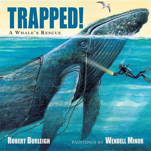 Trapped! a Whale's Rescue - by  Robert Burleigh (Hardcover) - image 1 of 1