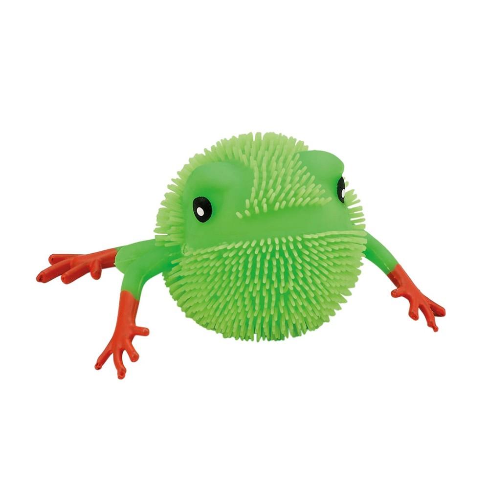 Image of Shulsinger Judaica Squishy Frog Craft Activity Kit