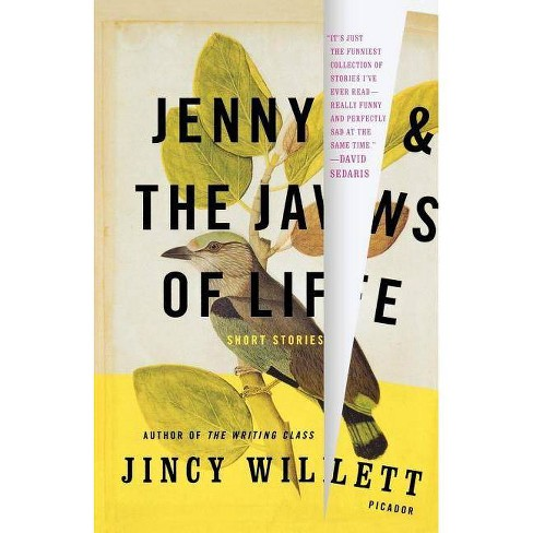 Jenny and the Jaws of Life - by  Jincy Willett (Paperback) - image 1 of 1