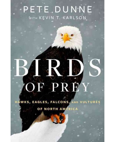 Birds of Prey : Hawks, Eagles, Falcons, and Vultures of North America (Hardcover) (Pete Dunne) - image 1 of 1