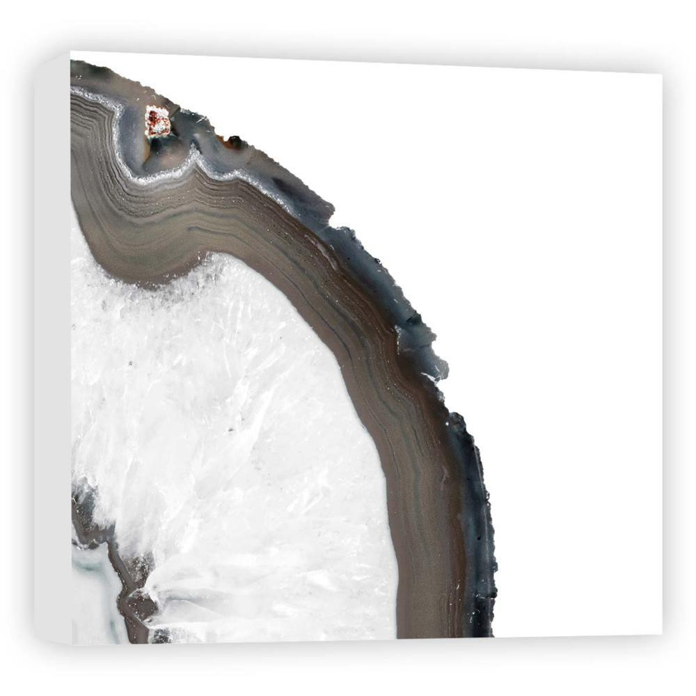 16 34 X 16 34 White Trunk Ii Decorative Wall Art Ptm Images