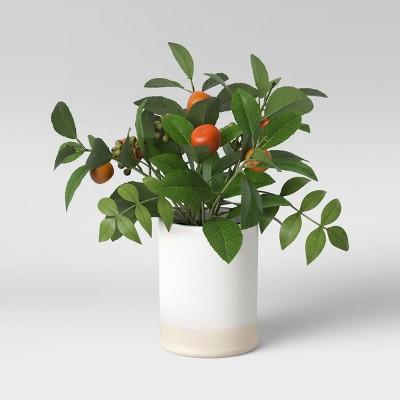 """15"""" x 12"""" Artificial Citrus Plant Leaf in Ceramic Pot White - Threshold™"""