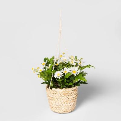 "11"" x 9"" Artificial Daisy Hanging Arrangement in Basket White/Green - Threshold™"