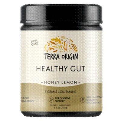 Terra Origin Healthy Gut - Honey Lemon - 8.16oz