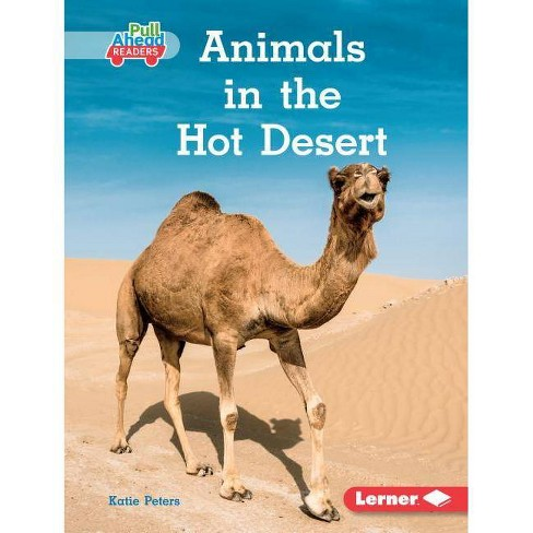 Animals in the Hot Desert - (Let's Look at Animal Habitats (Pull Ahead Readers -- Nonfict) (Hardcover) - image 1 of 1