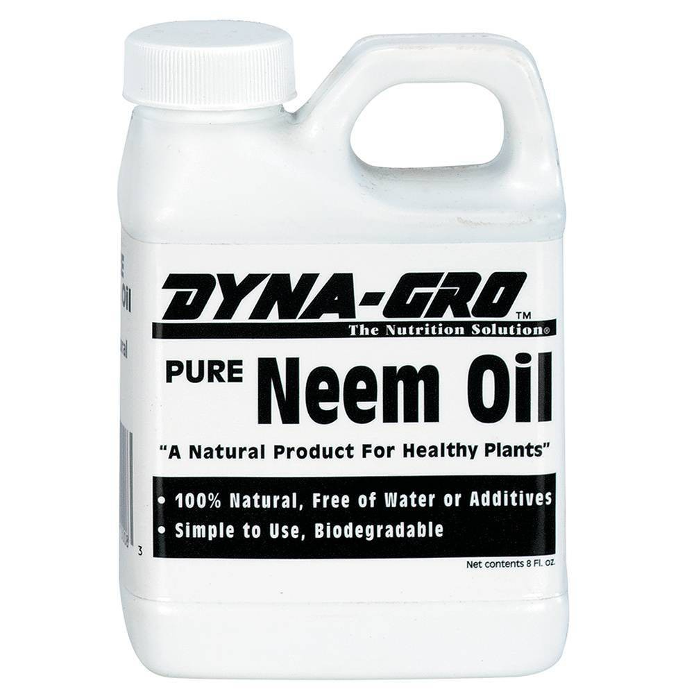 Image of 32oz Neem Oil - Brussel's Bonsai