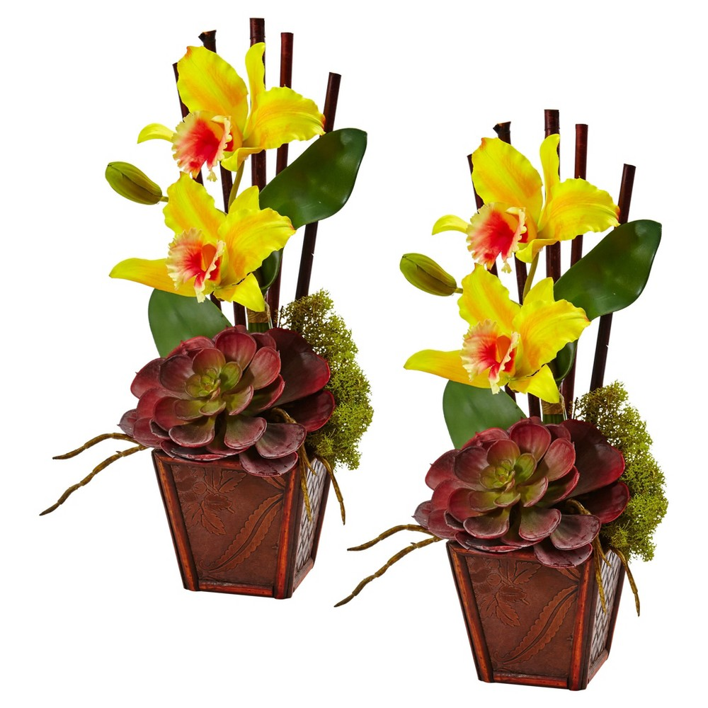 Cattleya Orchid and Succulent Arrangement (Set of 2) Yellow - Nearly Natural