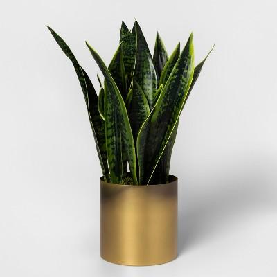 Faux Sansevieria Plant in Gold Pot - Project 62™