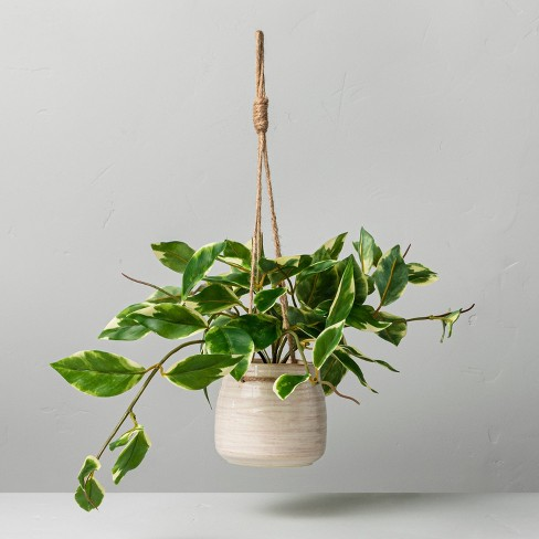 """8"""" Faux Variegated Hoya Leaf Hanging Plant - Hearth & Hand™ with Magnolia - image 1 of 2"""
