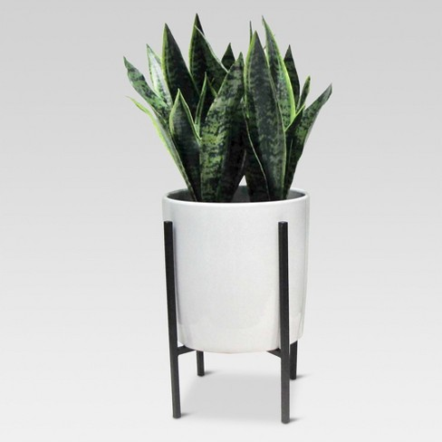 Artificial Plant in Stand Large - Project 62™ - image 1 of 4