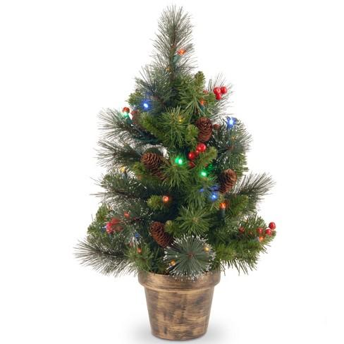 2ft crestwood spruce tree with battery operated multicolor led lights national tree company - Battery Operated Christmas Tree