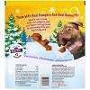 Nestle Purina Beggin' Pumpkin Spice Dog Treats - 32oz - image 2 of 4