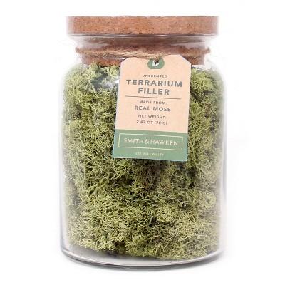 Decorative Moss Filler - Smith & Hawken™
