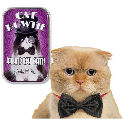 Accoutrements Bow Tie For Cats in Collectible Tin