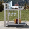 Cape Coral Aluminum Bar Cart - Natural - Christopher Knight Home - image 2 of 4