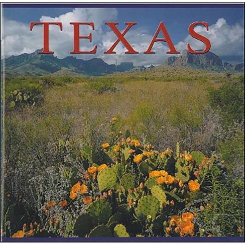 Texas - by  Tanya Lloyd Kyi (Paperback) - image 1 of 1